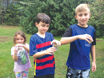 Bolton siblings Briana, Brenden and Sean hold monarch butterflies that are ready for flight. Release day was the culmination of a 4-week, unplanned rescue mission.                                                                                            Courtesy